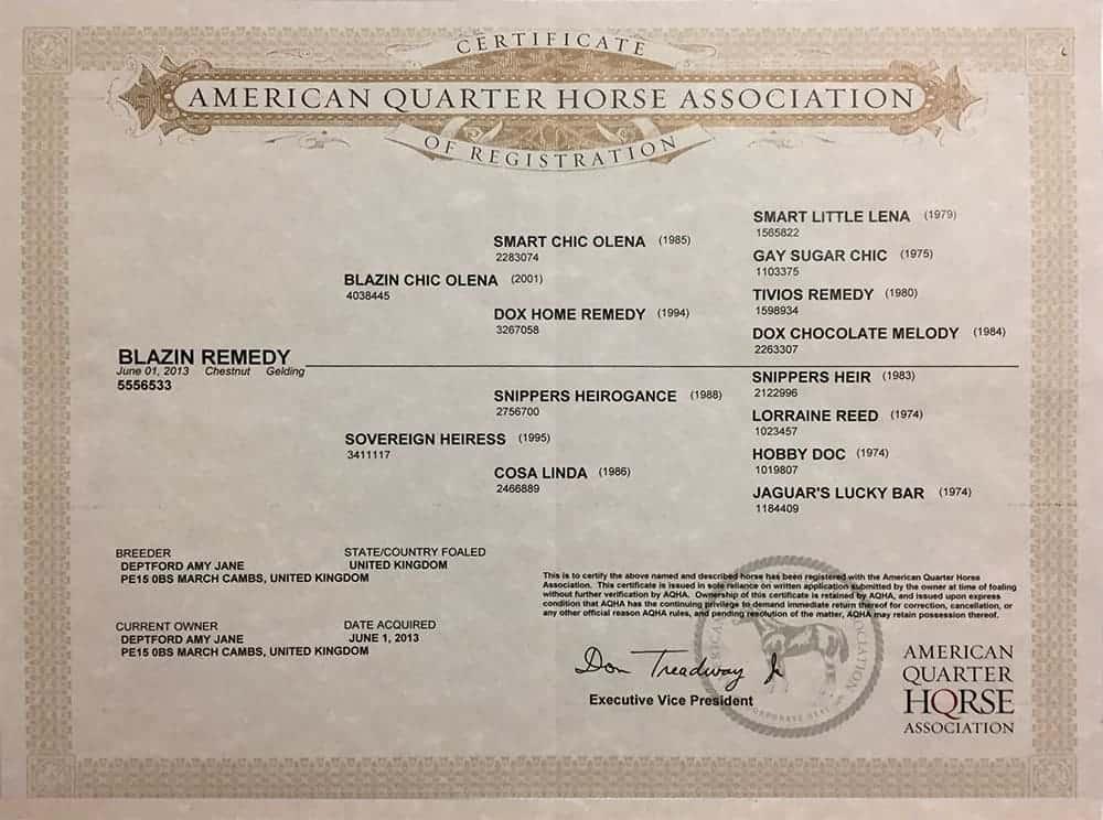 Blazin Remedy Registration papers
